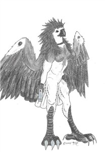 The wild avian femme.